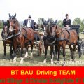 BT BAU Driving TEAM at TOPOLCIANKY SVK, First Time Erwin Gillinger Sponsor started with Christian Schlöglhofer in Topolcianky SVK