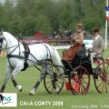 Golden Wheel CUP Winner CAI-A CONTY  Ms Brisou Anne Violaine France