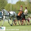 Golden Wheel CUP Winner CAI-A France Dressage