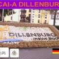 CAI-A Dillenburg CITY