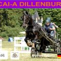 MARATHON secound Day CAI-A Dillenburg 13rd of JUNE