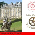 Golden Wheel CUP Four in HAND Driving Partner 2009