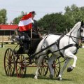 Susanne Leibetseder Winner CAI-A Kisber Aszar Single Driving 