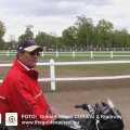 Golden Wheel CUP Management CAI-A Kladruby Petr Vozab two times Winner of the world important Horses SPORT EVENT PARDOPICE Horses Racing.