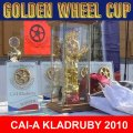 FINAL GOLDEN WHEL CUP TEAM DRIVING 2010 CAI-A Kladruby Winner DUEN RAINER GER