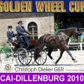 Dieker Christoph GER 2nd PLACE CAI- Dillenburg Dressage Golden Wheel CUP Single Driving 2010