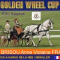 BRISOU Anne Violaine FRA 4th Place Dressage Golden Wheel CUP Single Driving CAI-A Haras De La Nee France, 48,90 Points