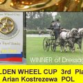Adrian Kostrezewa 3rd Place Golden Wheel CUP, Winner of Dressage CAI-A Topolcianky Final of Golden Wheel CUP 2009