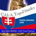 Golden Wheel CUP Final CAI-A Topolcianky SK, Pairs Driving