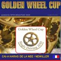 Golden Wheel CUP Start Single Driving 2010 CAI-A Haras De La Need