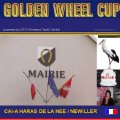 Golden Wheel CUP 2010 Single Driving START in FRANCE CAI-A HARAS DE LA NEE / NEWILLER SEE YOU