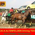 Josef Leibetseder Kladruber Zentrum Altenfelden, CAI-A und Golden Wheel CUP Management Altenfelden, 4th Place CAI-A Topolcianky 2009 TEAM Driving