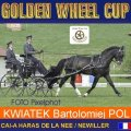 Kwiatek Barolomiej 3rd Place Dressage Golden Wheel CUP Single Driving CAI-A Haras De La Nee France, 47,36  Points