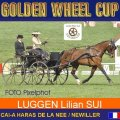 LUGGEN Lilian SUI 5th Place Dressage Golden Wheel CUP Single Driving CAI-A Haras De La Nee France, 49,15  Points