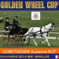 LEIBETSEDER Susanne AUT 7th Place Dressage Kladruber Zentrum Altenfelden Golden Wheel CUP Single Driving CAI-A Haras De La Nee France, 54,78 Points
