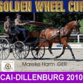 Mareike Harm GER 4th PLACE CAI- Dillenburg Dressage Golden Wheel CUP Single Driving 2010