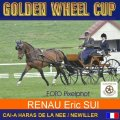 RENAUD ERIC SUI 2nd Place Dressage Golden Wheel CUP Single Driving CAI-A Haras De La Nee France, 45,70 Points