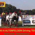 Stefan Amort CAI-A Altenfelden Driving TEAM, Four in Hand Driving
