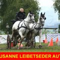Susanne Leibetseder Obstacle Winner CAI-A Altenfelden first Place