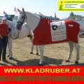 SUSANNE Kladruber Horse from Altenfelden