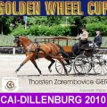 WINNER DRESSAGE Thorsten Zarembovice GER CAI Dillenburg Golden Wheel CUP Single Driving 2010