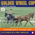 Golden Wheel CUP Winner Dressage CAI-A Haras De LA Need France Mr.ZAREMBOWICZ Thorsten  40,58 Points