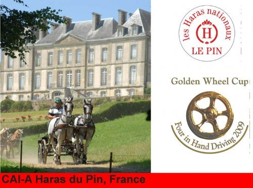 Golden Wheel CUP Four in HAND Driving Partner 2009 CAI-A Haras du Pin France