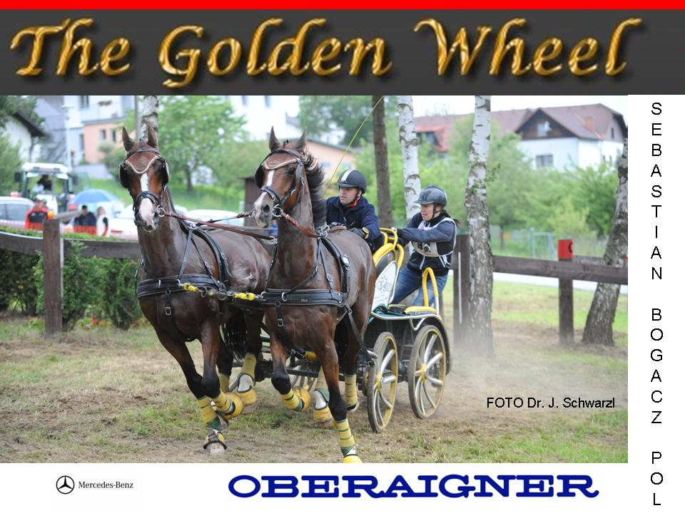 golden_wheel_cup_2011_2nd_place