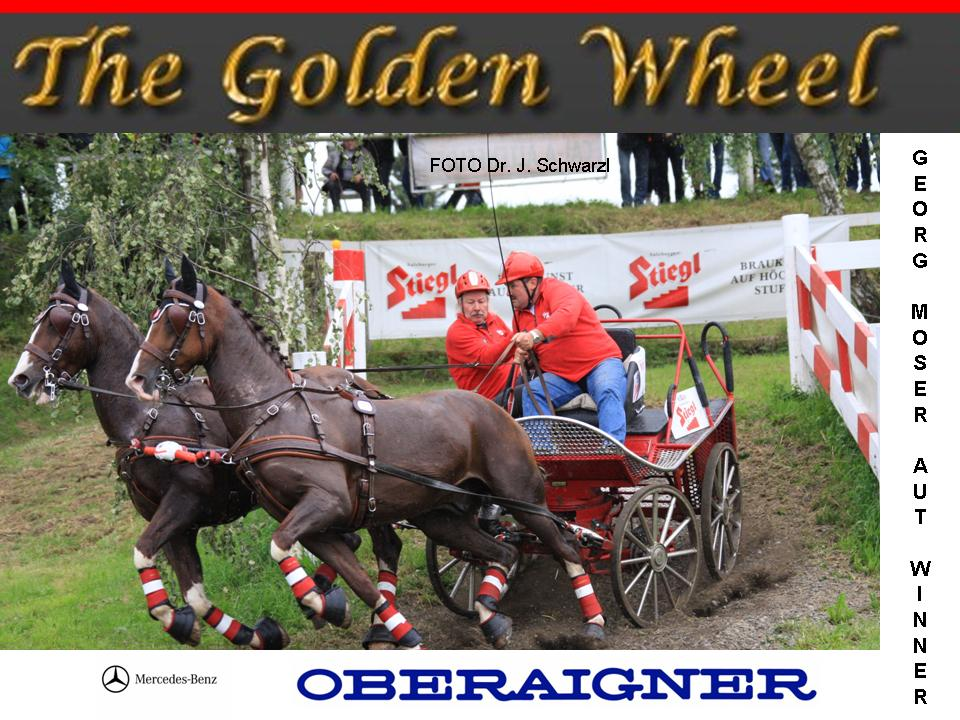 golden_wheel_cup_winner_2011