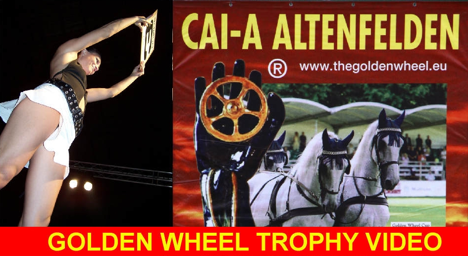 golden_wheel_trophy_video_003a.jpg